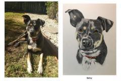6-Bailey